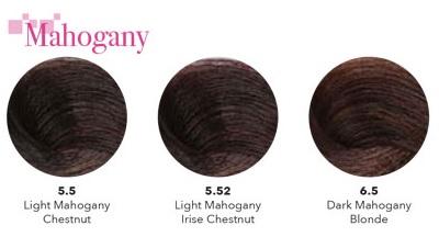 mahogany warna rambut