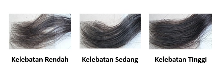 tipe-tipe kelebatan rambut